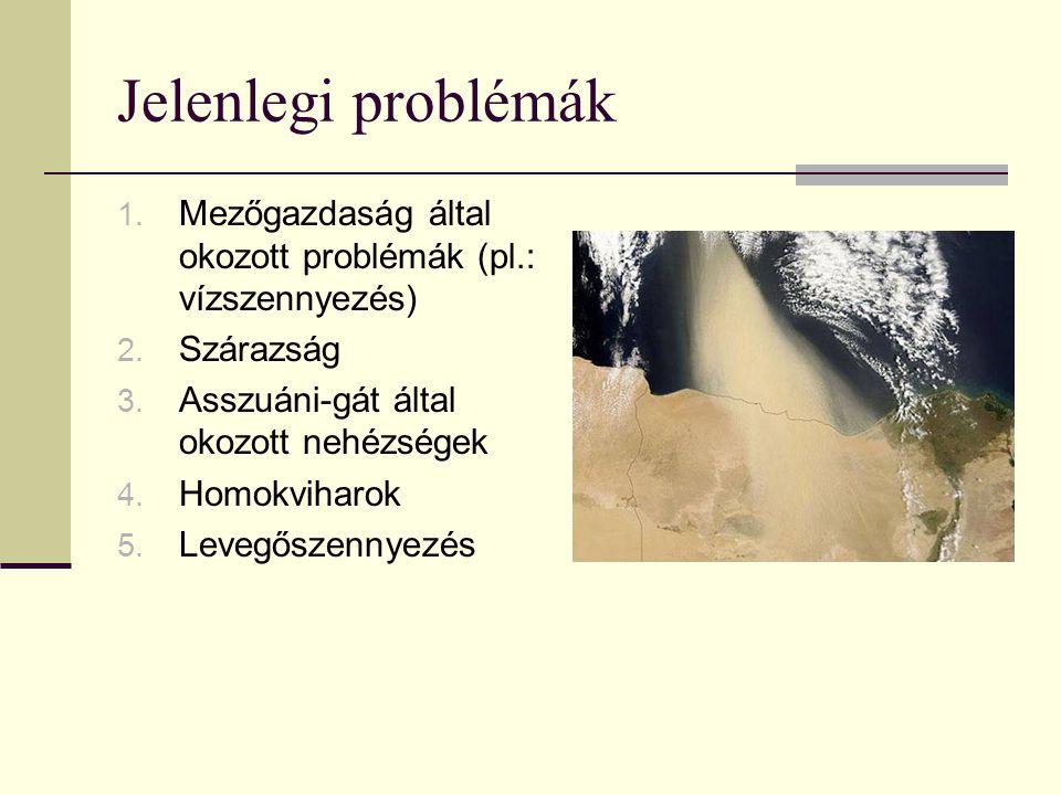 Jelenlegi problémák 1. Mezőgazdaság által okozott problémák (pl.: vízszennyezés) 2. Szárazság 3. Asszuáni-gát által okozott nehézségek 4. Homokviharok