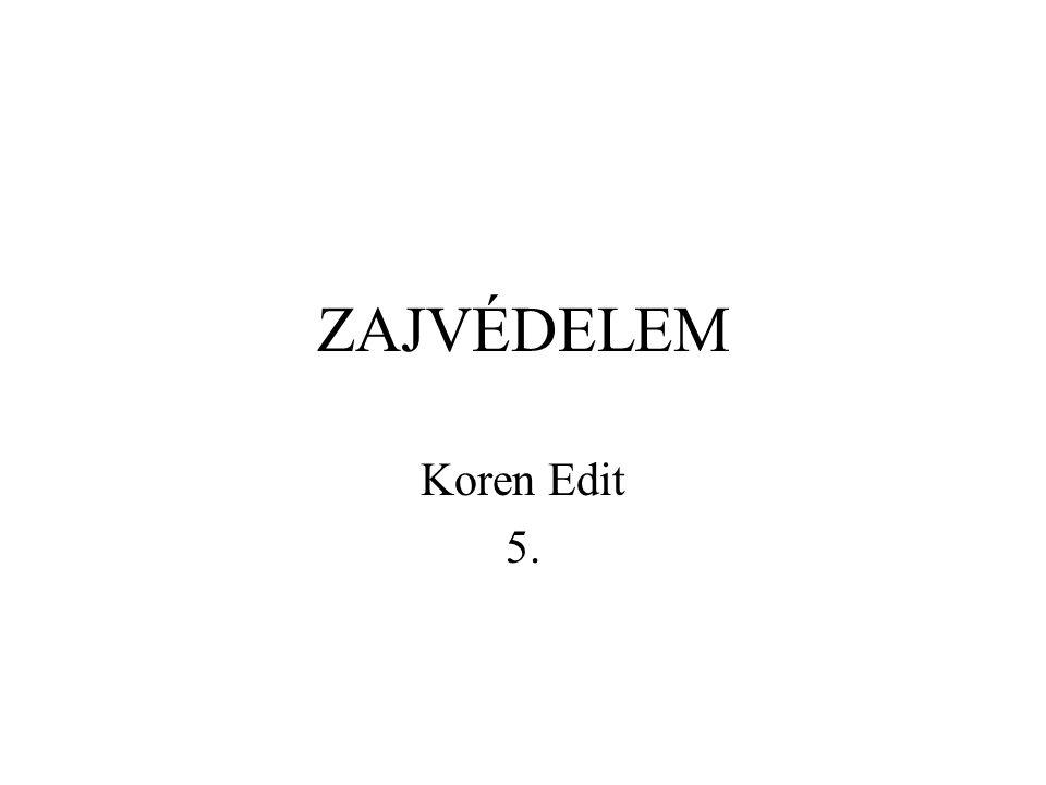 ZAJVÉDELEM Koren Edit 5.