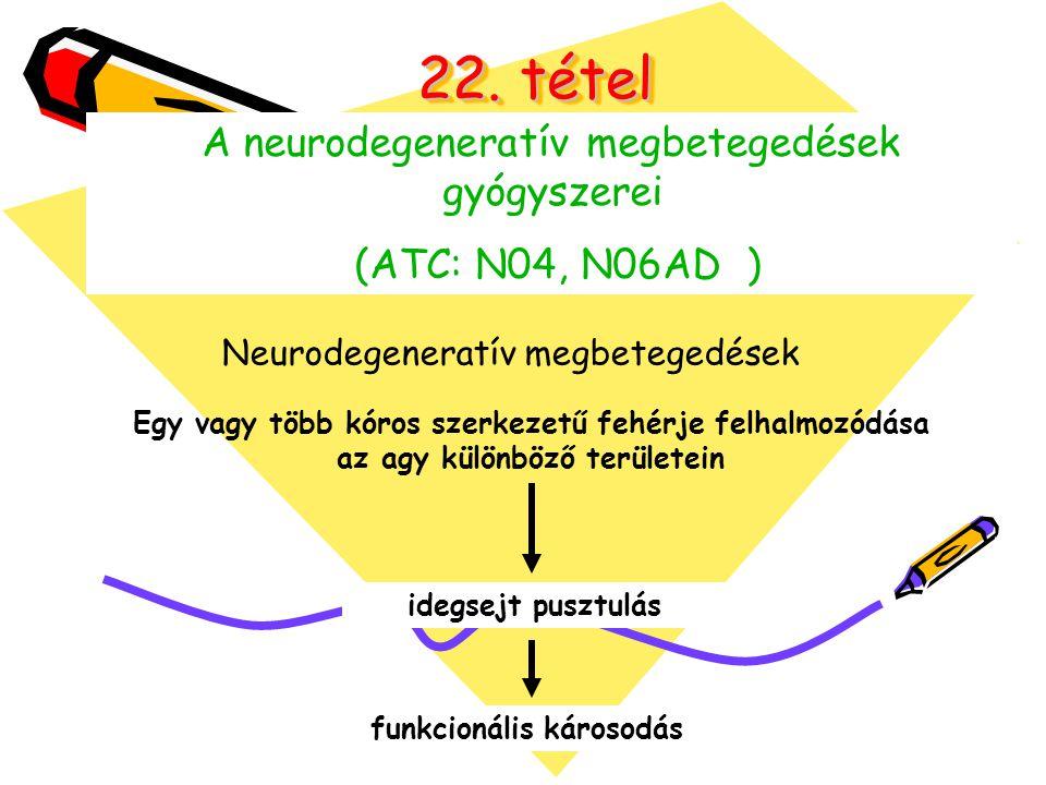 Neurodegeneratív megbetegedések Alzheimer kór Parkinson kór Prion betegség Huntington kór