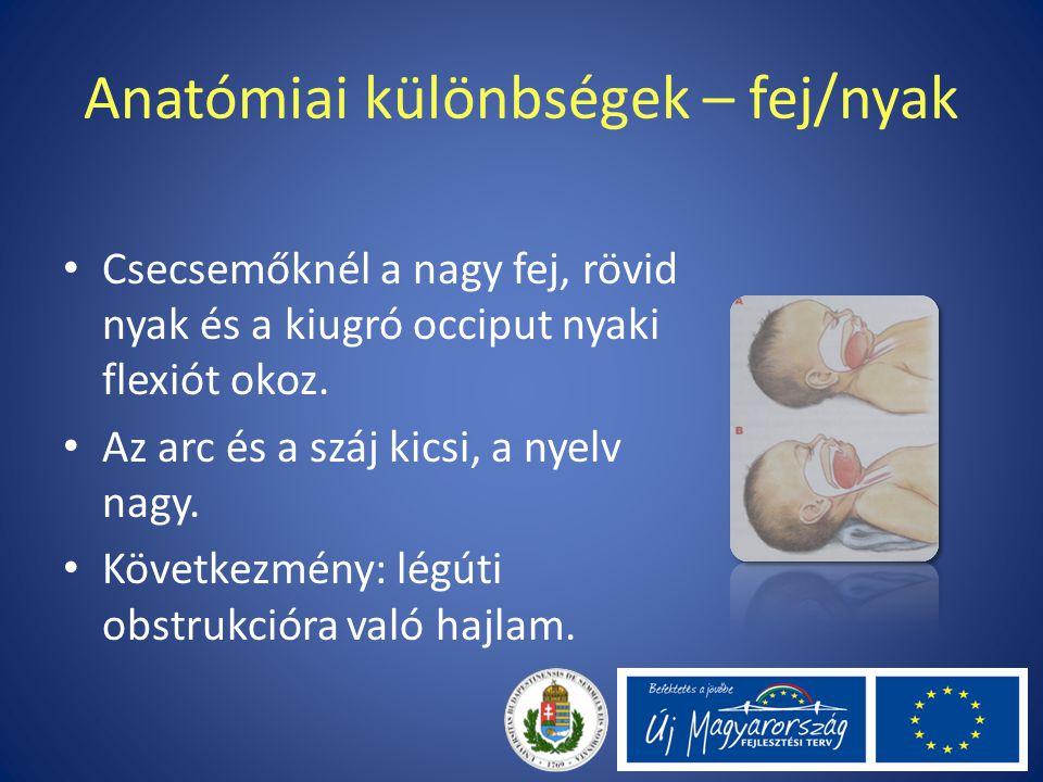 Anatómiai különbségek – fej/nyak Csecsemőknél a nagy fej, rövid nyak és a kiugró occiput nyaki flexiót okoz. Az arc és a száj kicsi, a nyelv nagy. Köv