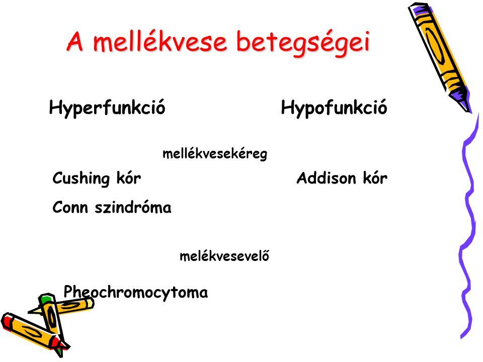 A mellékvese betegségei HyperfunkcióHypofunkció mellékvesekéreg melékvesevelő Cushing kór Conn szindróma Addison kór Pheochromocytoma