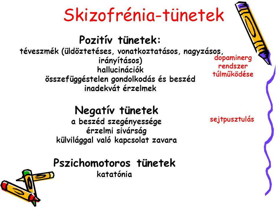 Skizofrénia-tünetek Pozitív tünetek: téveszmék (üldöztetéses, vonatkoztatásos, nagyzásos, irányításos) hallucinációk összefüggéstelen gondolkodás és b