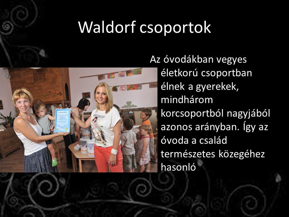 Waldorf csoportok Az óvodákban vegyes életkorú csoportban élnek a gyerekek, mindhárom korcsoportból nagyjából azonos arányban.