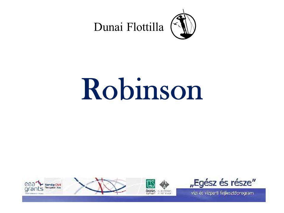 Robinson Mit vinnétek magatokkal egy lakatlan szigetre.