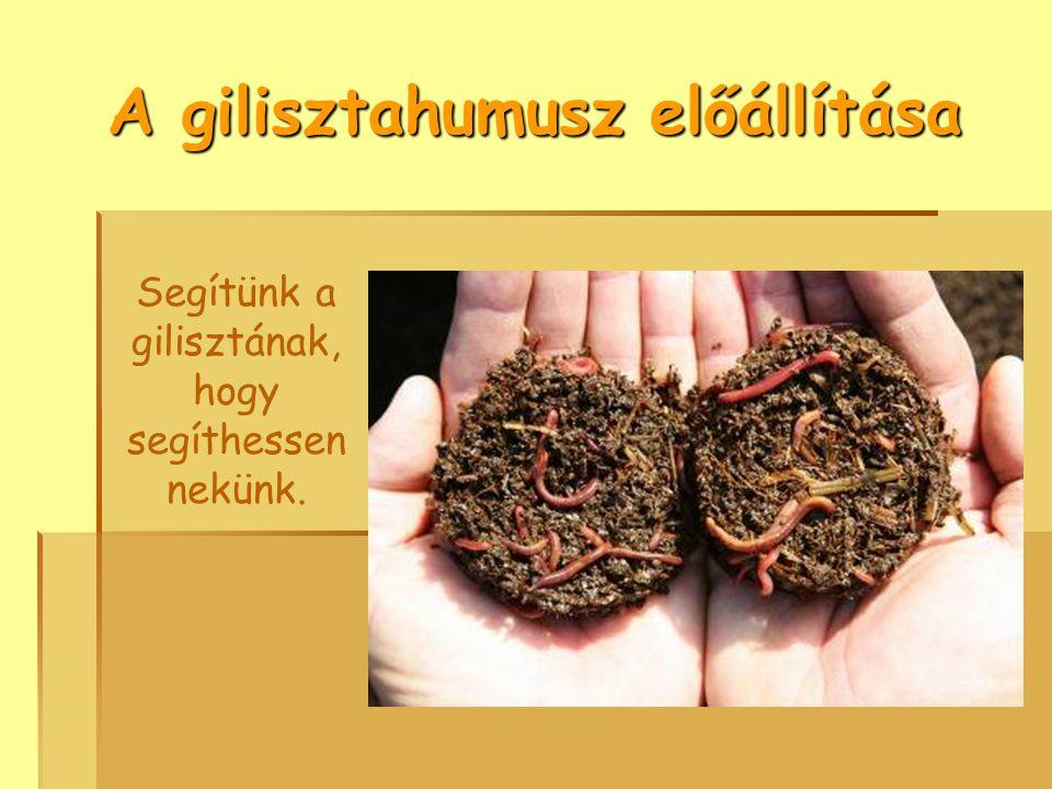 A gilisztahumusz előállítása Segítünk a gilisztának, hogy segíthessen nekünk.