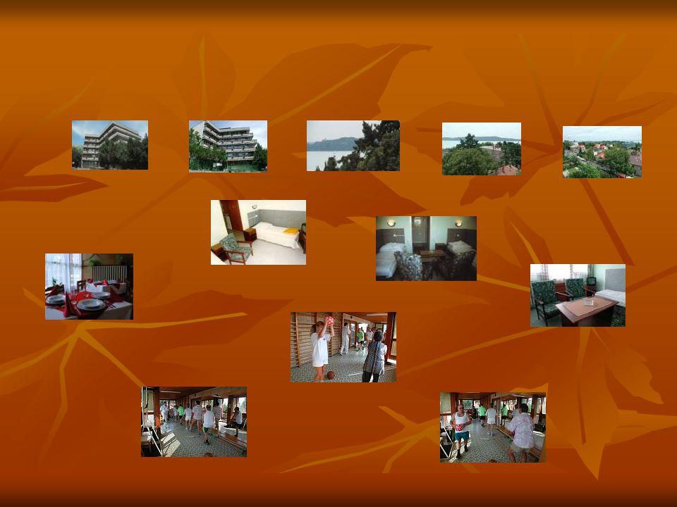 Terheléses vizsgálatok formái FIZIKAI TERHELÉS FIZIKAI TERHELÉS Kerékpár ergometria Kerékpár ergometria Futószalag ergometria Futószalag ergometria Spiroergometria Spiroergometria Izometriás terhelés (handgrip teszt) Izometriás terhelés (handgrip teszt) Pitvari stimulálás Pitvari stimulálás FARMAKOLÓGIAI TERHELÉS FARMAKOLÓGIAI TERHELÉS Dipyridamol, adenozin Dipyridamol, adenozin dobutamin dobutamin