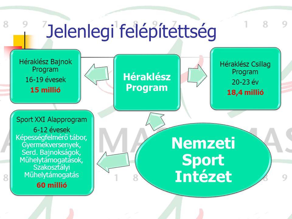 Jelenlegi felépítettség Nemzeti Sport Intézet Sport XXI Alapprogram 6-12 évesek Képességfelmérő tábor, Gyermekversenyek, Serd. Bajnokságok, Műhelytámo