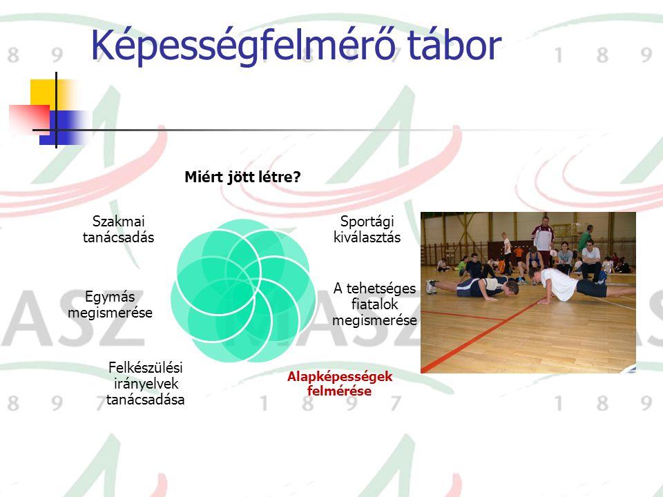 Képességfelmérő tábor Miért jött létre? Sportági kiválasztás A tehetséges fiatalok megismerése Alapképességek felmérése Felkészülési irányelvek tanács