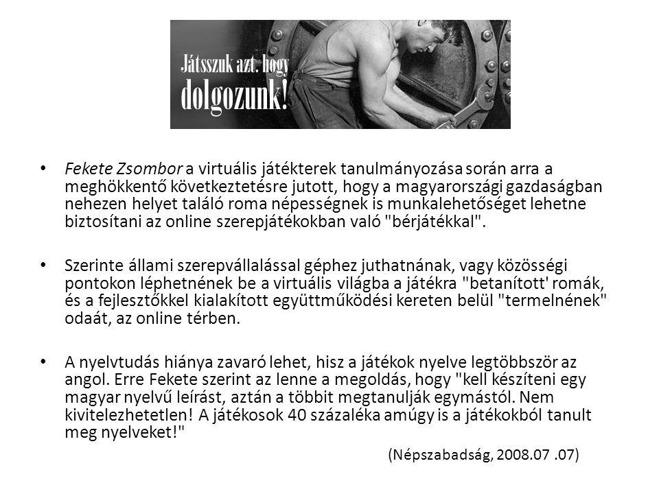 Fekete Zsombor a virtuális játékterek tanulmányozása során arra a meghökkentő következtetésre jutott, hogy a magyarországi gazdaságban nehezen helyet