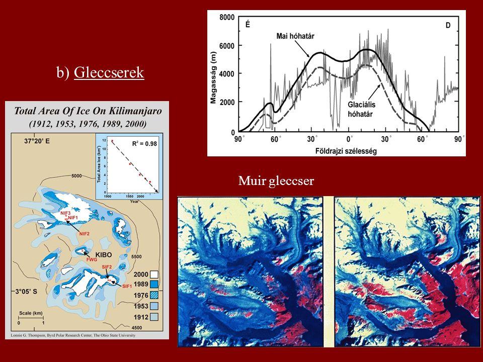 b) Gleccserek Muir gleccser