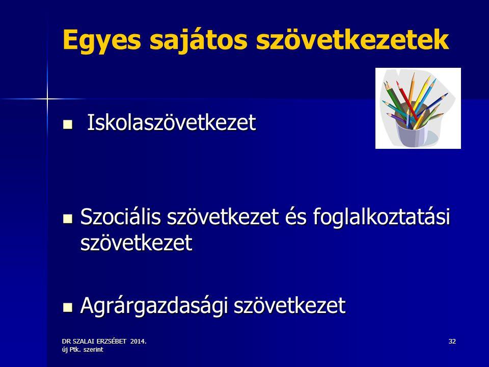 DR SZALAI ERZSÉBET 2014. új Ptk. szerint 32 Egyes sajátos szövetkezetek Iskolaszövetkezet Iskolaszövetkezet Szociális szövetkezet és foglalkoztatási s
