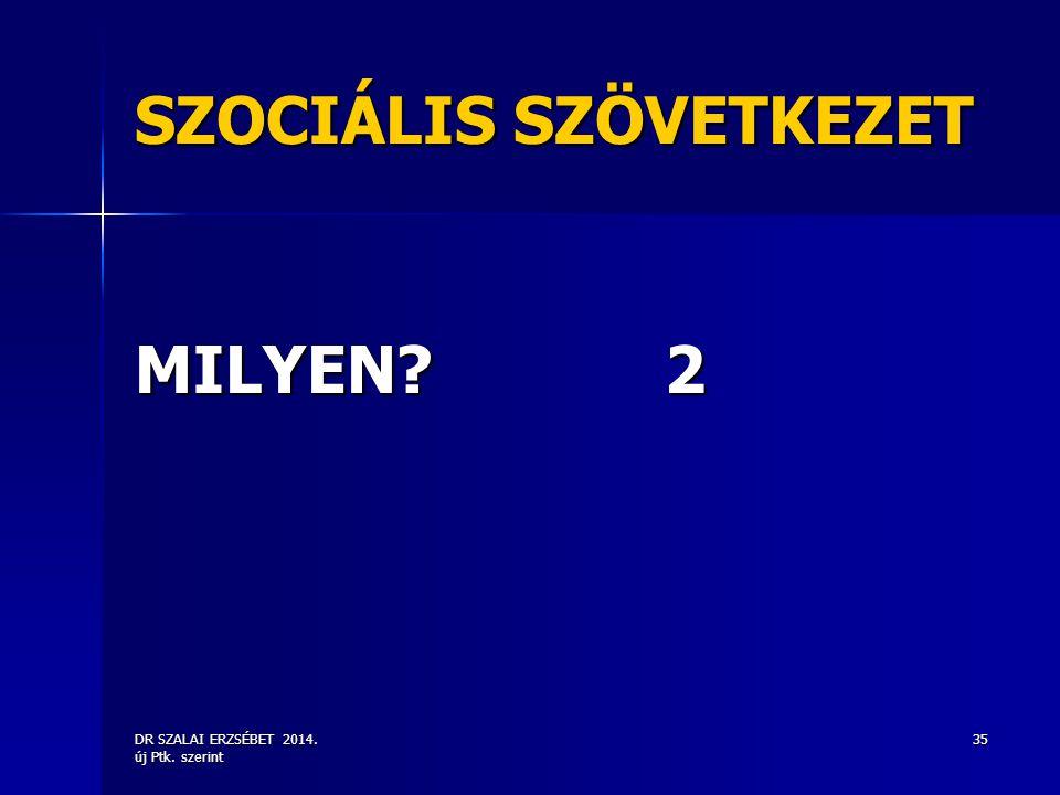 DR SZALAI ERZSÉBET 2014. új Ptk. szerint 35 SZOCIÁLIS SZÖVETKEZET MILYEN?2