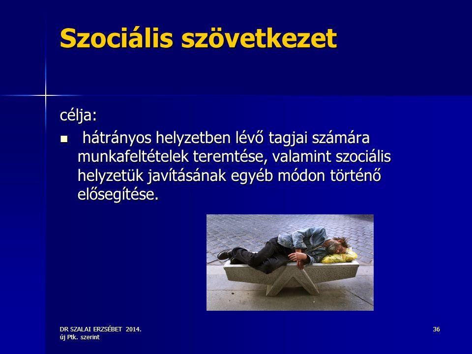 DR SZALAI ERZSÉBET 2014. új Ptk. szerint 36 Szociális szövetkezet célja: hátrányos helyzetben lévő tagjai számára munkafeltételek teremtése, valamint