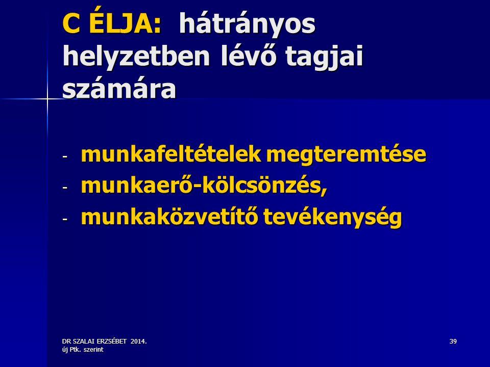 DR SZALAI ERZSÉBET 2014. új Ptk. szerint 39 C ÉLJA: hátrányos helyzetben lévő tagjai számára - munkafeltételek megteremtése - munkaerő-kölcsönzés, - m