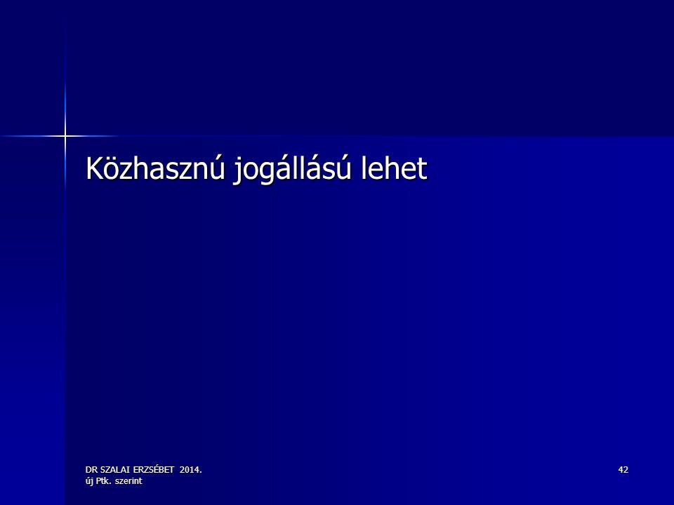 DR SZALAI ERZSÉBET 2014. új Ptk. szerint 42 Közhasznú jogállású lehet