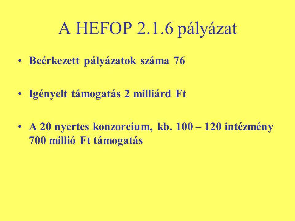 A HEFOP 2.1.6 pályázat Beérkezett pályázatok száma 76 Igényelt támogatás 2 milliárd Ft A 20 nyertes konzorcium, kb.