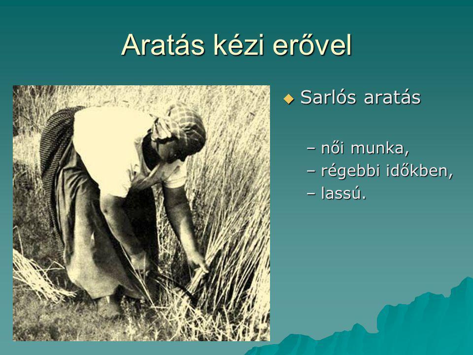 Aratás kézi erővel  Sarlós aratás –női munka, –régebbi időkben, –lassú.