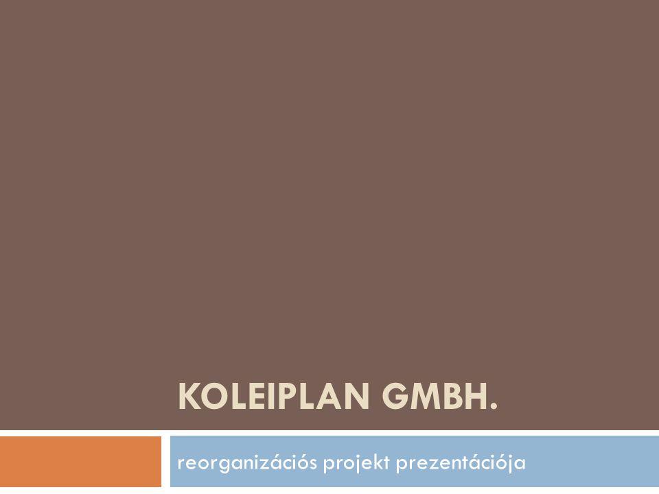 Gyártás átstruktúrálása  A Koleiplan Gmbh jelenleg nagy mértékű kapacitás felesleggel rendelkezik.