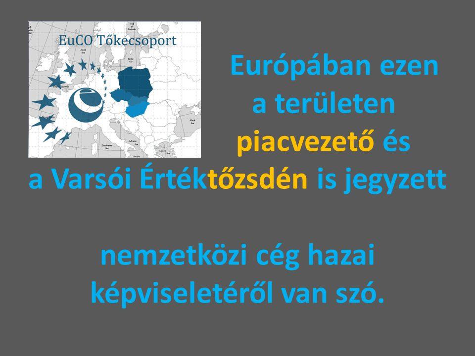 Európában ezen a területen piacvezető és a Varsói Értéktőzsdén is jegyzett nemzetközi cég hazai képviseletéről van szó.