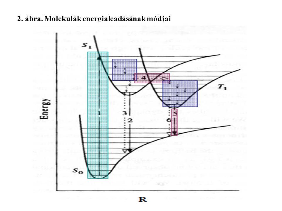 2. ábra. Molekulák energialeadásának módjai