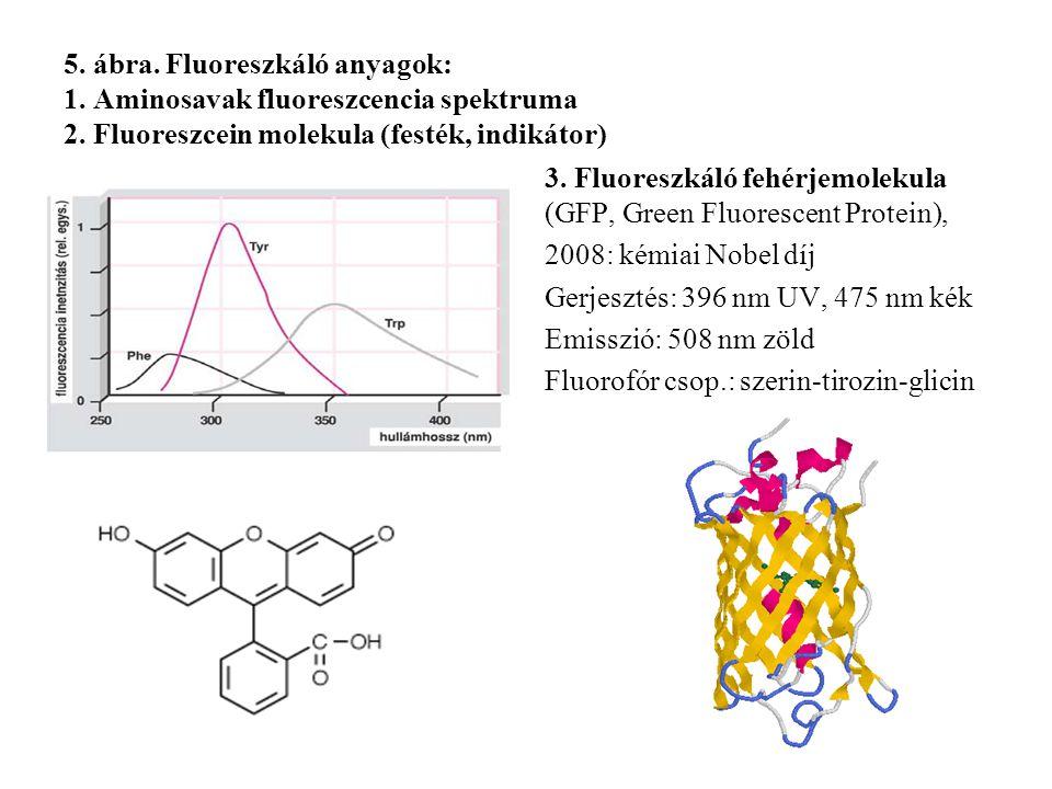 5. ábra. Fluoreszkáló anyagok: 1. Aminosavak fluoreszcencia spektruma 2. Fluoreszcein molekula (festék, indikátor) 3. Fluoreszkáló fehérjemolekula (GF