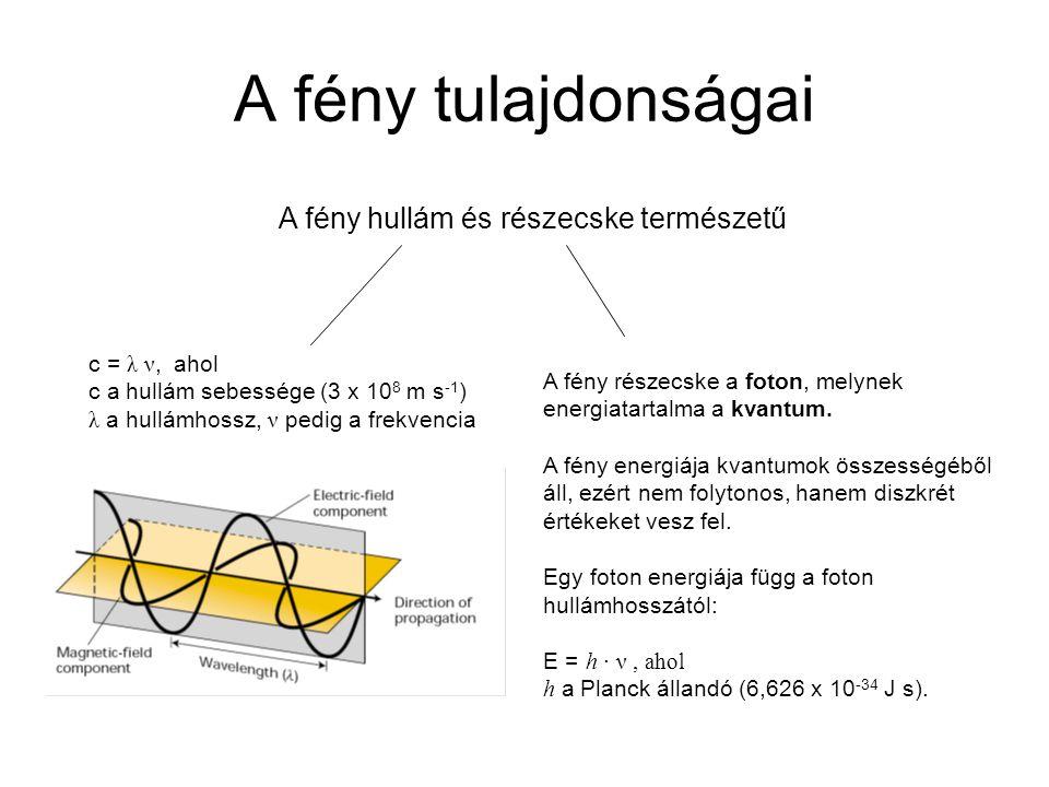 A fény tulajdonságai A fény hullám és részecske természetű c = λ ν, ahol c a hullám sebessége (3 x 10 8 m s -1 ) λ a hullámhossz, ν pedig a frekvencia A fény részecske a foton, melynek energiatartalma a kvantum.