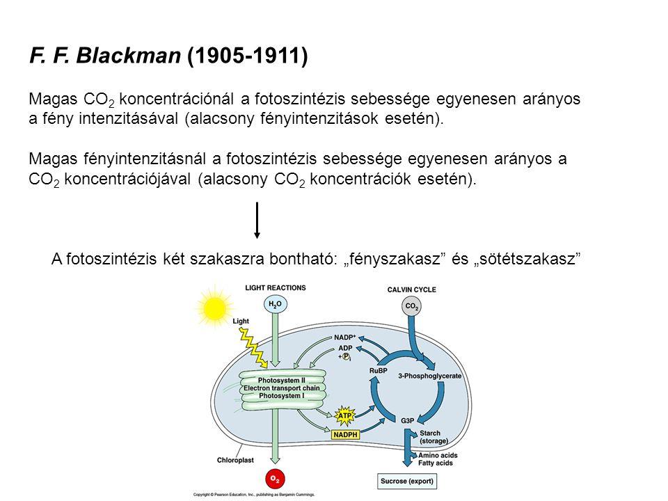 Spektrofotometria A fény elnyelődése a vizsgálandó anyagban (pl.
