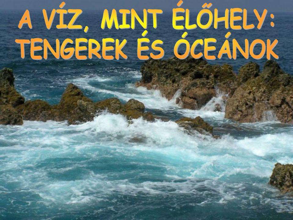 ≈A Föld 71%-át, 362 millió négyzetkilométert tengervíz borítja.