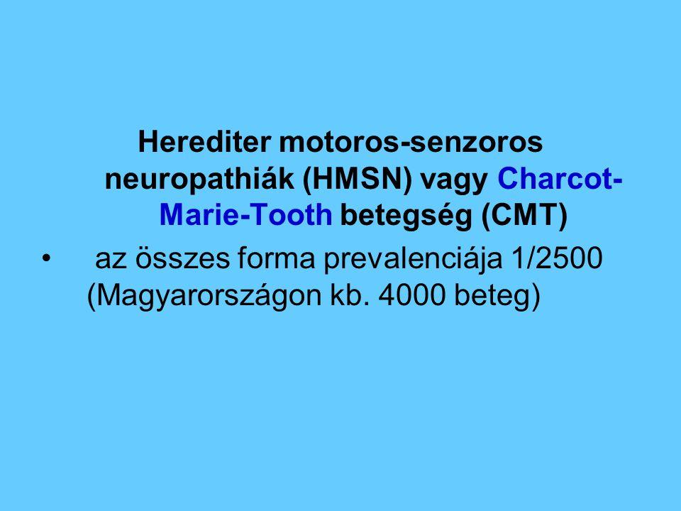 Herediter motoros-senzoros neuropathiák (HMSN) vagy Charcot- Marie-Tooth betegség (CMT) az összes forma prevalenciája 1/2500 (Magyarországon kb. 4000