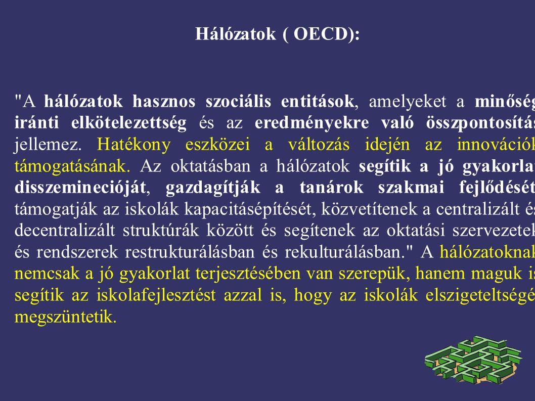 Hálózatok ( OECD): A hálózatok hasznos szociális entitások, amelyeket a minőség iránti elkötelezettség és az eredményekre való összpontosítás jellemez.