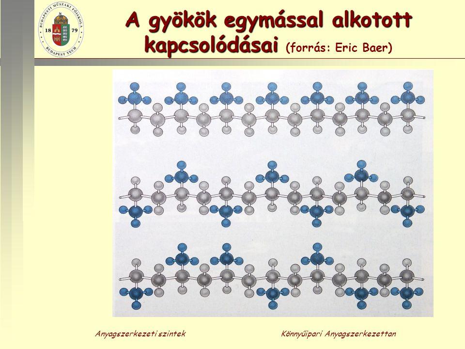 Anyagszerkezeti szintekKönnyűipari Anyagszerkezettan A gyökök egymással alkotott kapcsolódásai A gyökök egymással alkotott kapcsolódásai (forrás: Eric