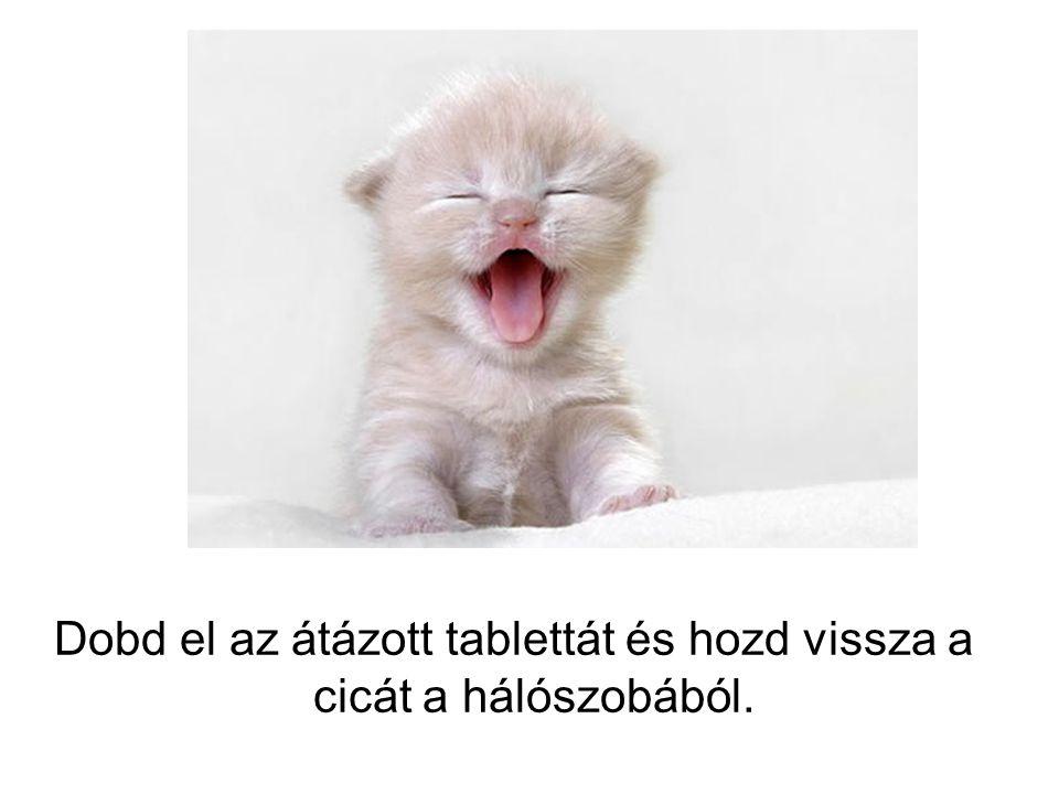 Dobd el az átázott tablettát és hozd vissza a cicát a hálószobából.
