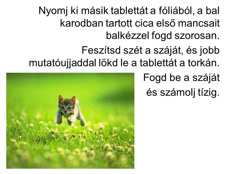 Nyomj ki másik tablettát a fóliából, a bal karodban tartott cica első mancsait balkézzel fogd szorosan.
