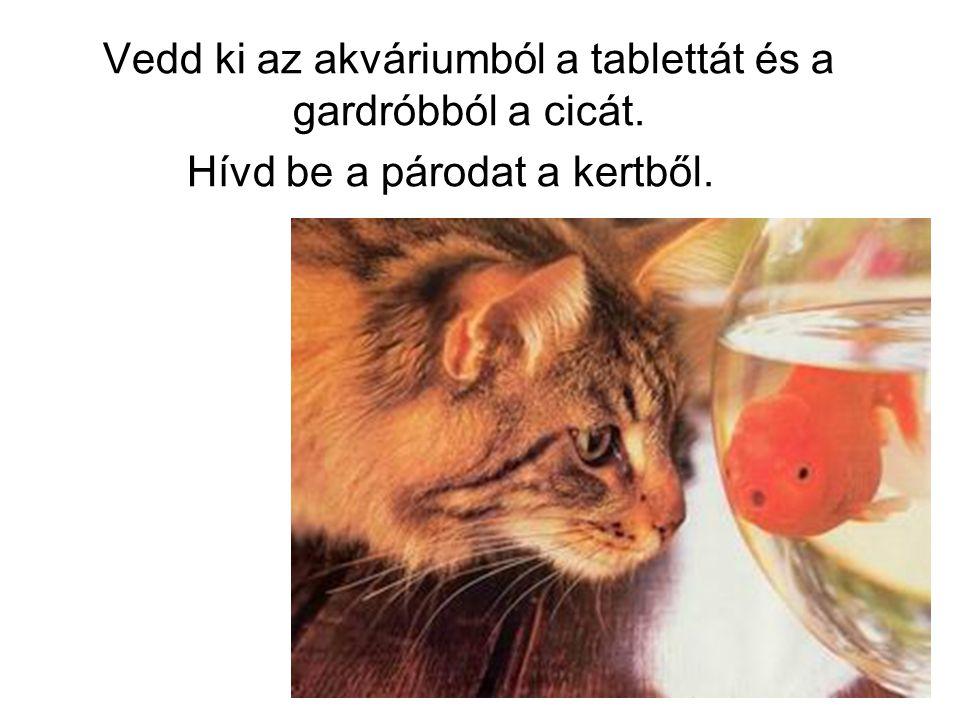 Vedd ki az akváriumból a tablettát és a gardróbból a cicát. Hívd be a párodat a kertből.