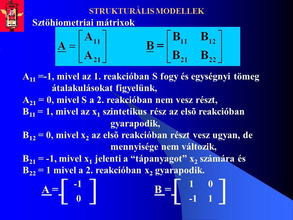STRUKTURÁLIS MODELLEK Sztöhiometriai mátrixok A 11 =-1, mivel az 1. reakcióban S fogy és egységnyi tömeg átalakulásokat figyelünk, A 21 = 0, mivel S a