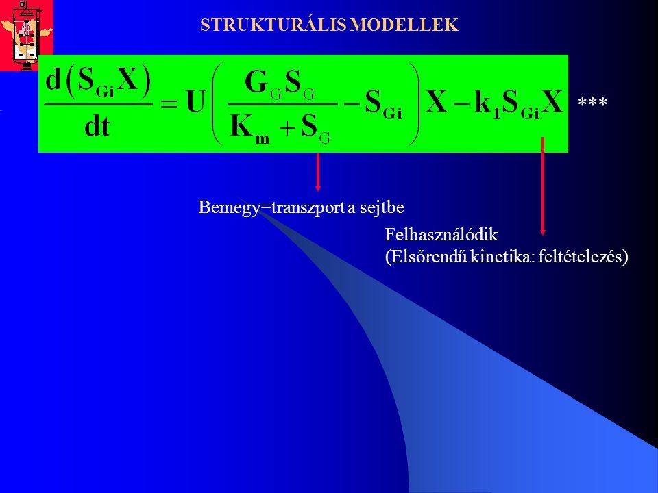 STRUKTURÁLIS MODELLEK Bemegy=transzport a sejtbe Felhasználódik (Elsőrendű kinetika: feltételezés) ***