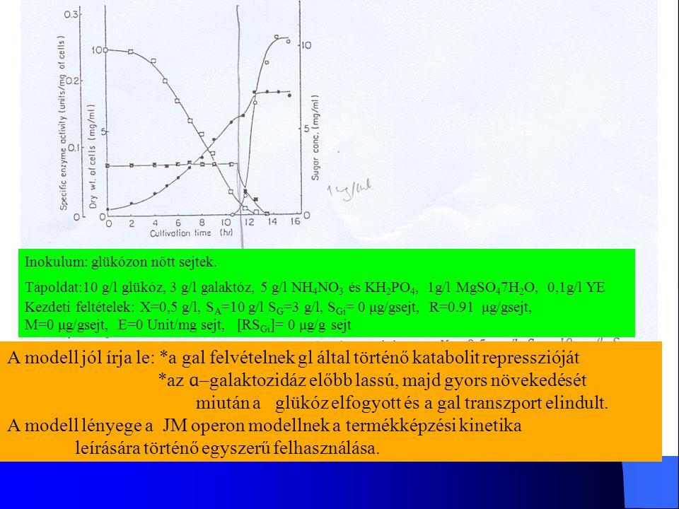 Inokulum: glükózon nőtt sejtek. Tápoldat:10 g/l glükóz, 3 g/l galaktóz, 5 g/l NH 4 NO 3 és KH 2 PO 4, 1g/l MgSO 4 7H 2 O, 0,1g/l YE Kezdeti feltételek