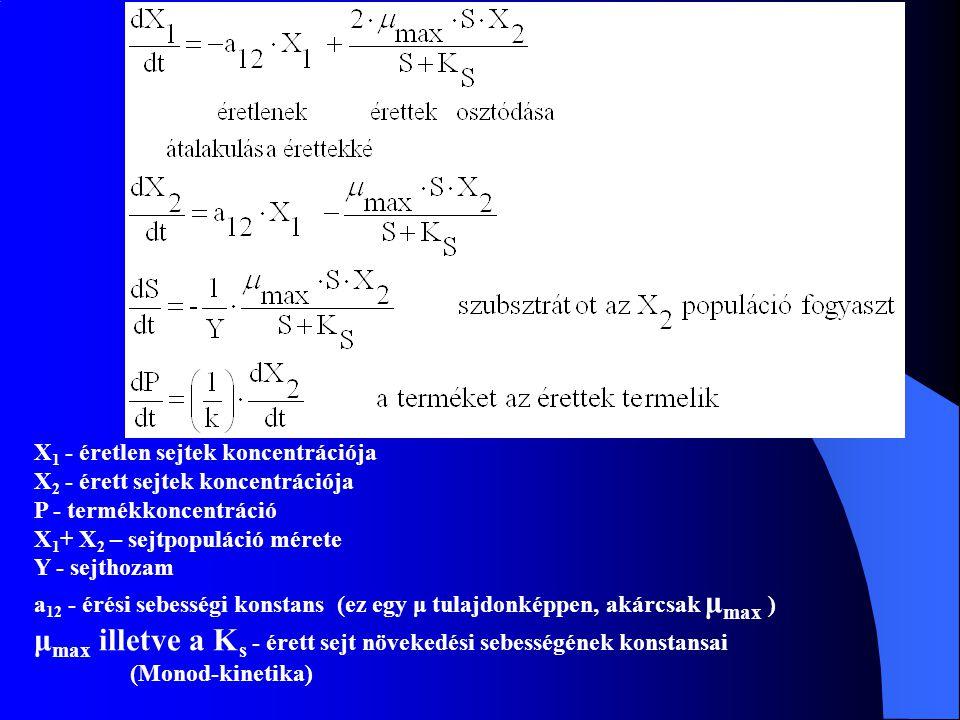 X 1 - éretlen sejtek koncentrációja X 2 - érett sejtek koncentrációja P - termékkoncentráció X 1 + X 2 – sejtpopuláció mérete Y - sejthozam a 12 - éré