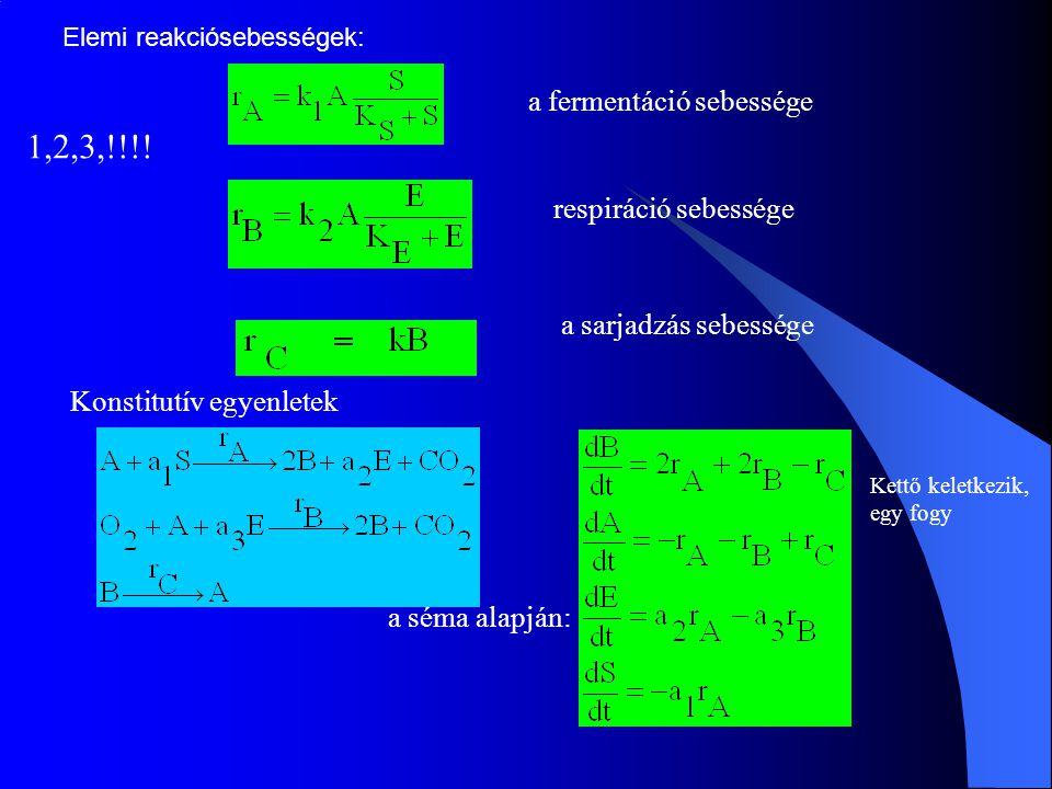a fermentáció sebessége respiráció sebessége a sarjadzás sebessége Elemi reakciósebességek: Konstitutív egyenletek a séma alapján: 1,2,3,!!!! Kettő ke