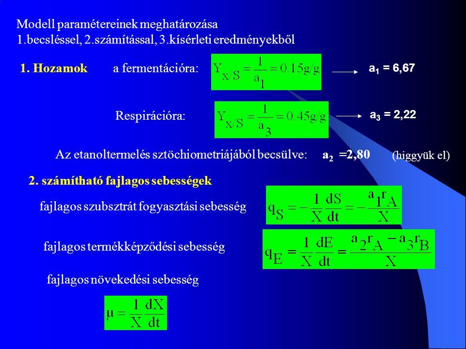 Modell paramétereinek meghatározása 1.becsléssel, 2.számítással, 3.kísérleti eredményekből 1. Hozamok a fermentációra: Respirációra: a 1 = 6,67 a 3 =