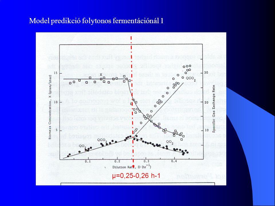 Model predikció folytonos fermentációnál 1 µ=0,25-0,26 h-1