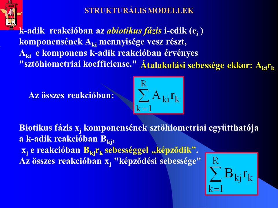 STRUKTURÁLIS MODELLEK k-adik reakcióban az abiotikus fázis i-edik (e i ) komponensének A ki mennyisége vesz részt, A ki e komponens k-adik reakcióban