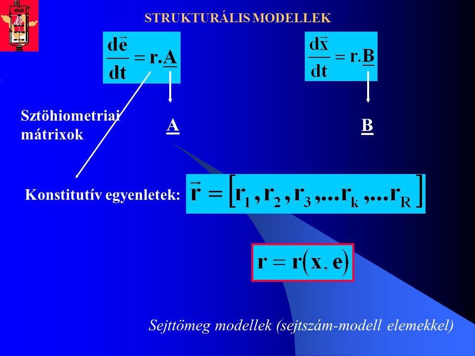 STRUKTURÁLIS MODELLEK Sztöhiometriai mátrixok A B Konstitutív egyenletek: Sejttömeg modellek (sejtszám-modell elemekkel)