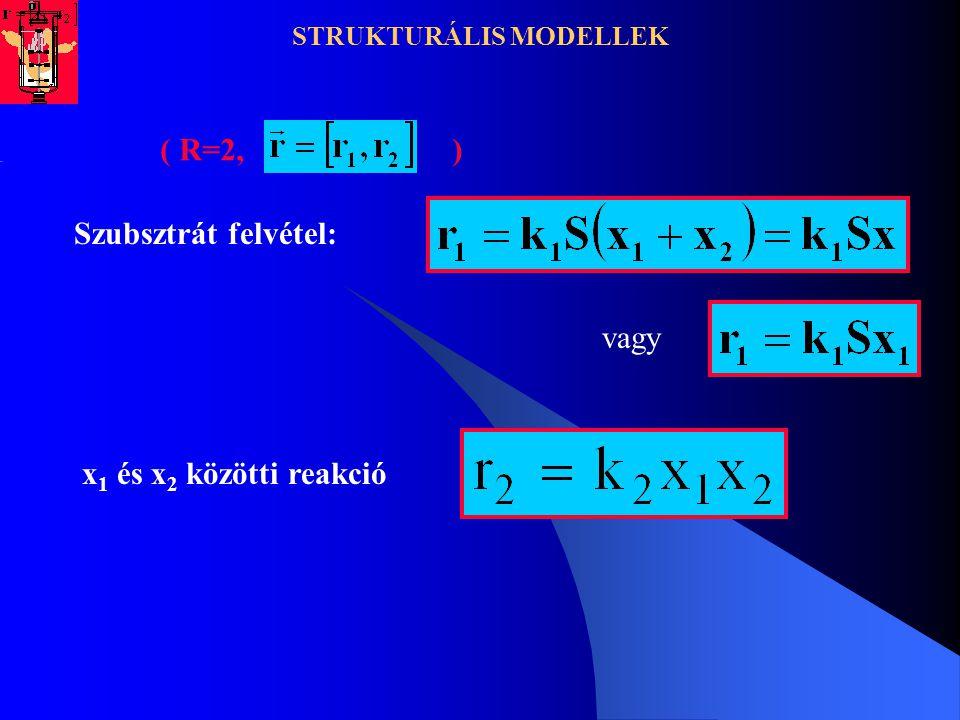 STRUKTURÁLIS MODELLEK ( R=2, ) Szubsztrát felvétel: x 1 és x 2 közötti reakció vagy