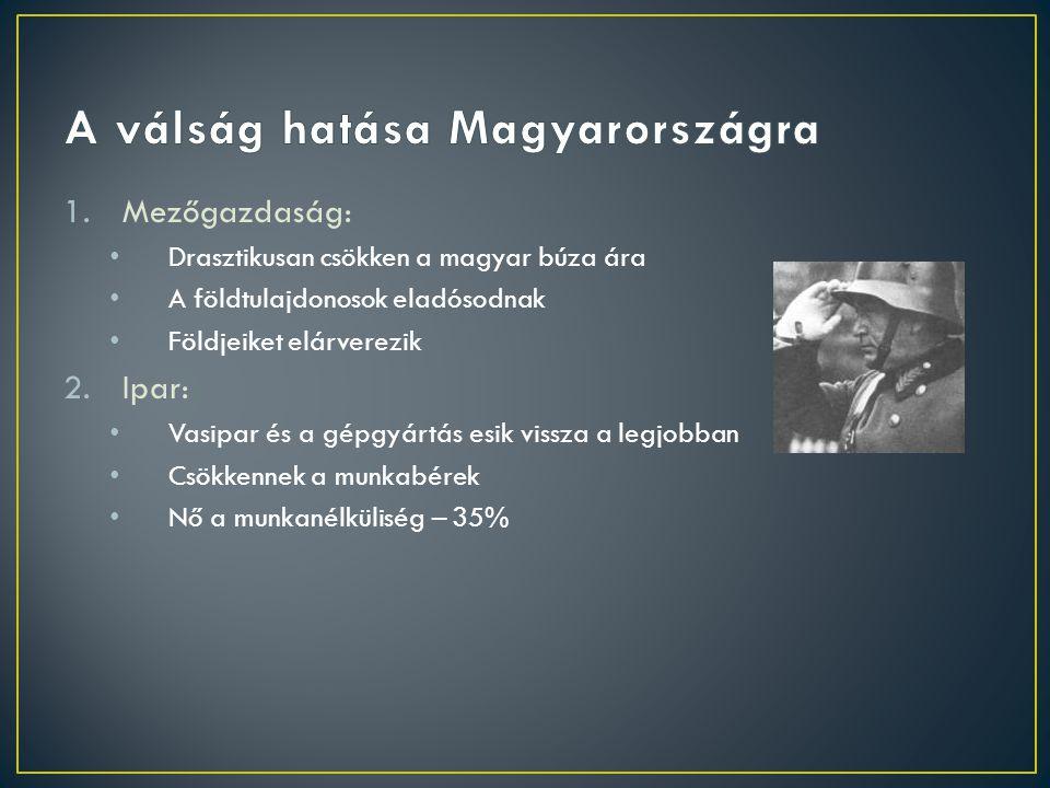 1.Mezőgazdaság: Drasztikusan csökken a magyar búza ára A földtulajdonosok eladósodnak Földjeiket elárverezik 2.Ipar: Vasipar és a gépgyártás esik viss