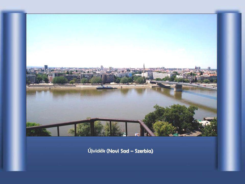 Horvát területen, V VV Vukovar