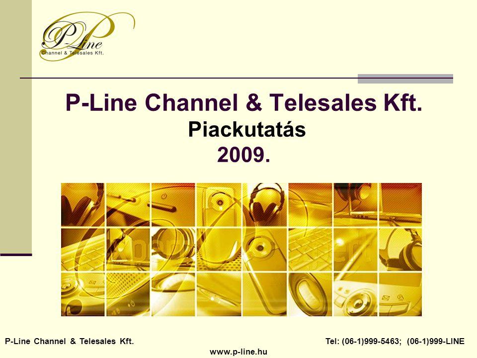 P-Line Channel & Telesales Kft. Piackutatás 2009. P-Line Channel & Telesales Kft. Tel: (06-1)999-5463; (06-1)999-LINE www.p-line.hu