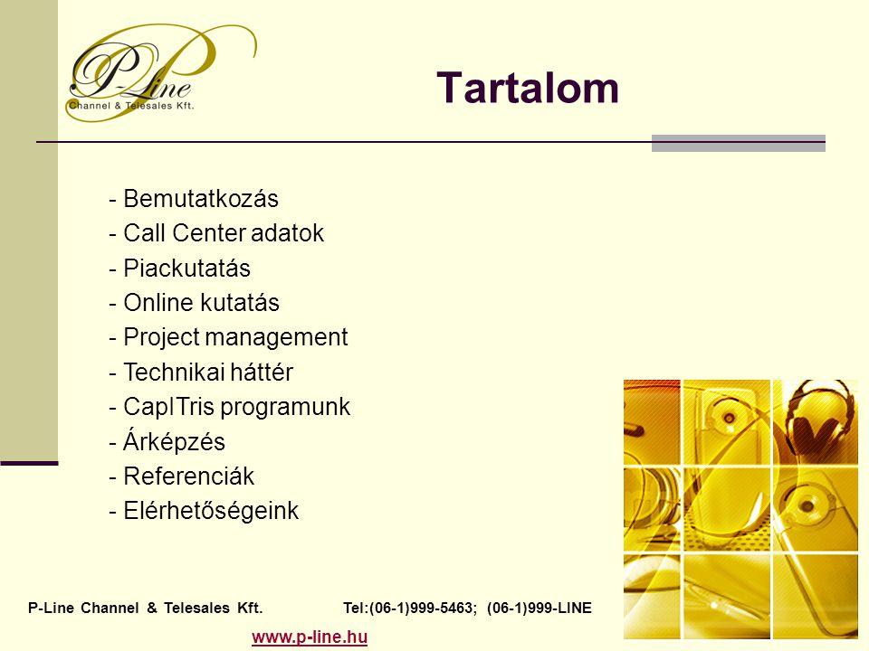 Tartalom P-Line Channel & Telesales Kft. Tel:(06-1)999-5463; (06-1)999-LINE www.p-line.hu - Bemutatkozás - Call Center adatok - Piackutatás - Online k