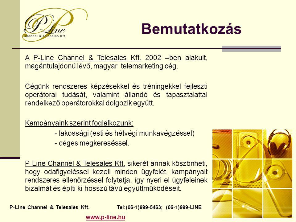 Bemutatkozás A P-Line Channel & Telesales Kft. 2002 –ben alakult, magántulajdonú lévő, magyar telemarketing cég. Cégünk rendszeres képzésekkel és trén