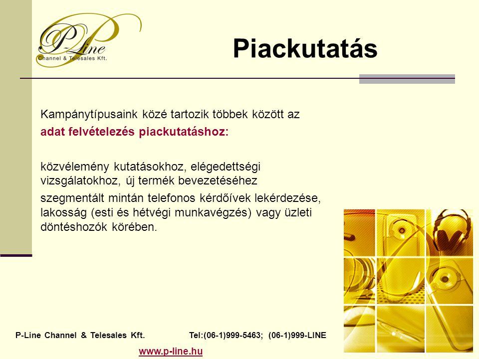 Piackutatás P-Line Channel & Telesales Kft. Tel:(06-1)999-5463; (06-1)999-LINE www.p-line.hu Kampánytípusaink közé tartozik többek között az adat felv